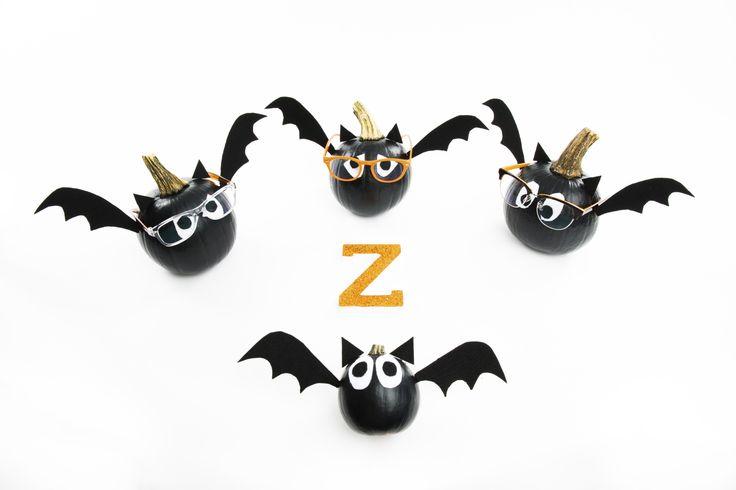 zenni pumpkins featured