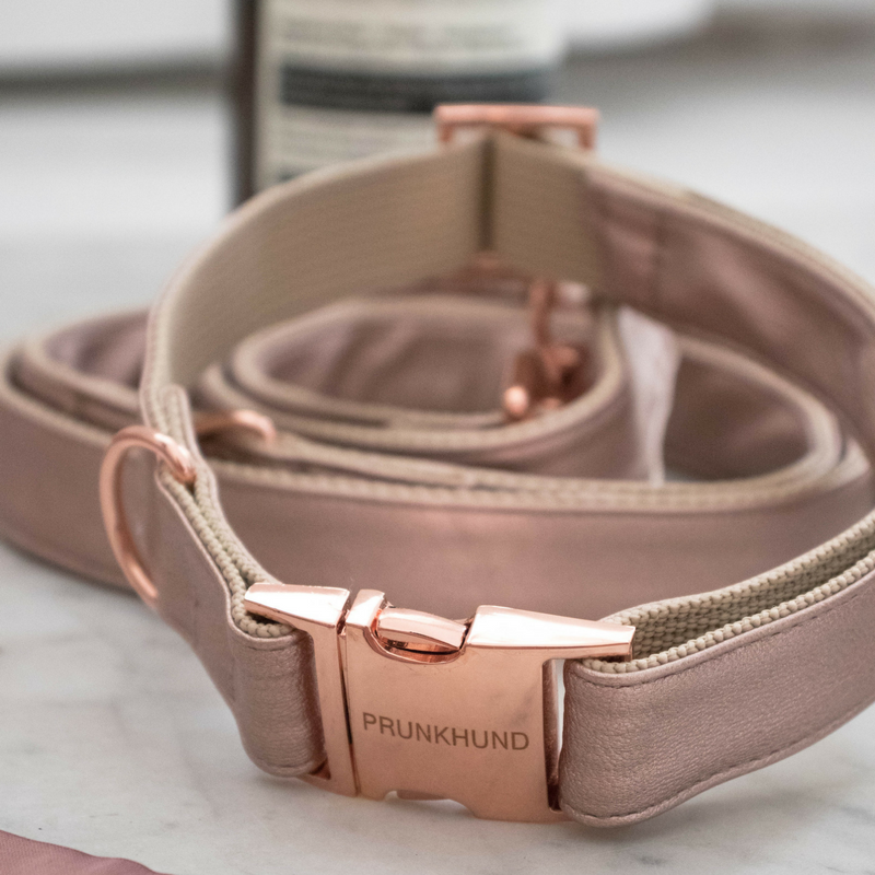 rose-gold-dog-collar